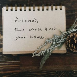 230166-friends-this-world-is-not-your-home